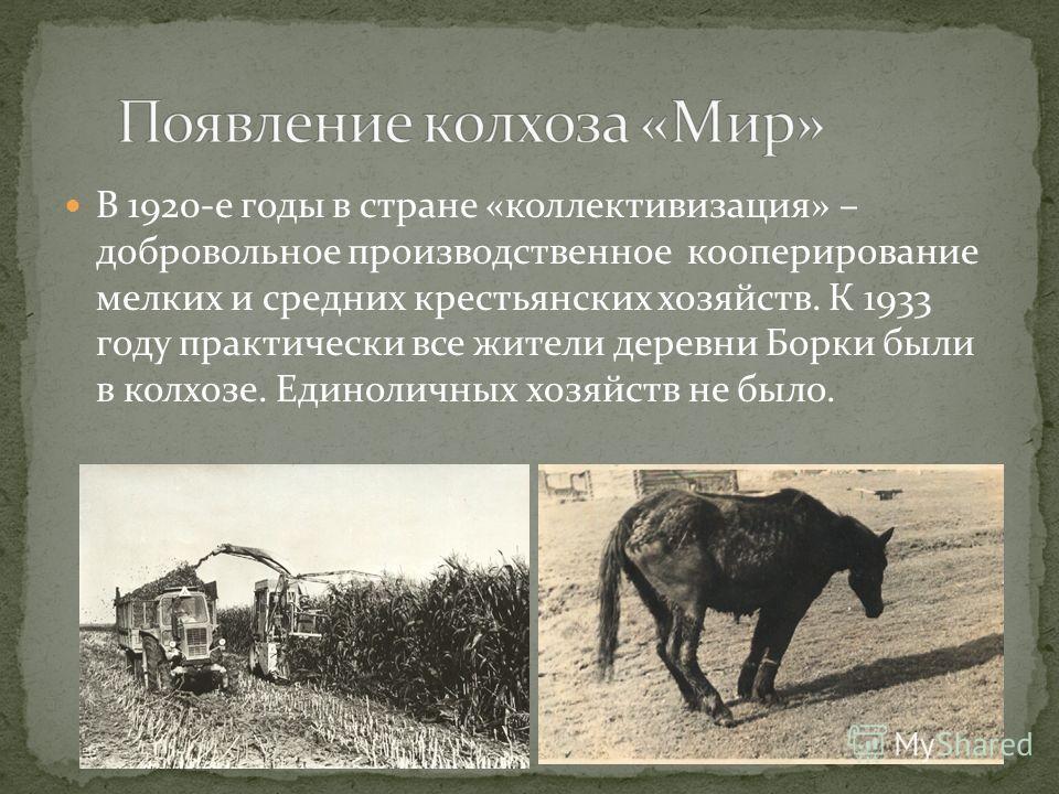 В 1920-е годы в стране «коллективизация» – добровольное производственное кооперирование мелких и средних крестьянских хозяйств. К 1933 году практически все жители деревни Борки были в колхозе. Единоличных хозяйств не было.