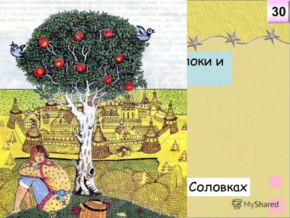 География 30 Где на Севере росли яблоки и другие фрукты? На Соловках