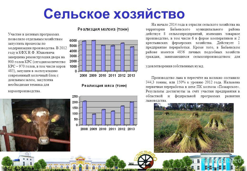Сельское хозяйство На начало 2014 года в отрасли сельского хозяйства на территории Бабаевского муниципального района действуе 8 сельхозпредприятий, имеющих товарное производство, в том числе 6 в форме кооперативов и 2 крестьянских фермерских хозяйств