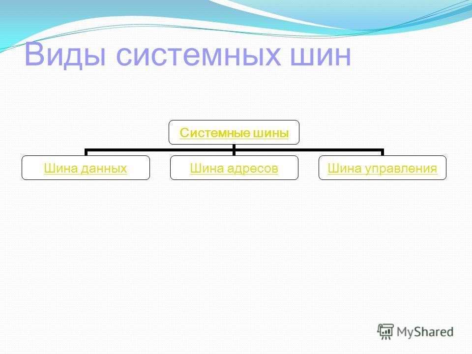 Виды системных шин Системные шины Шина данных Шина адресов Шина управления