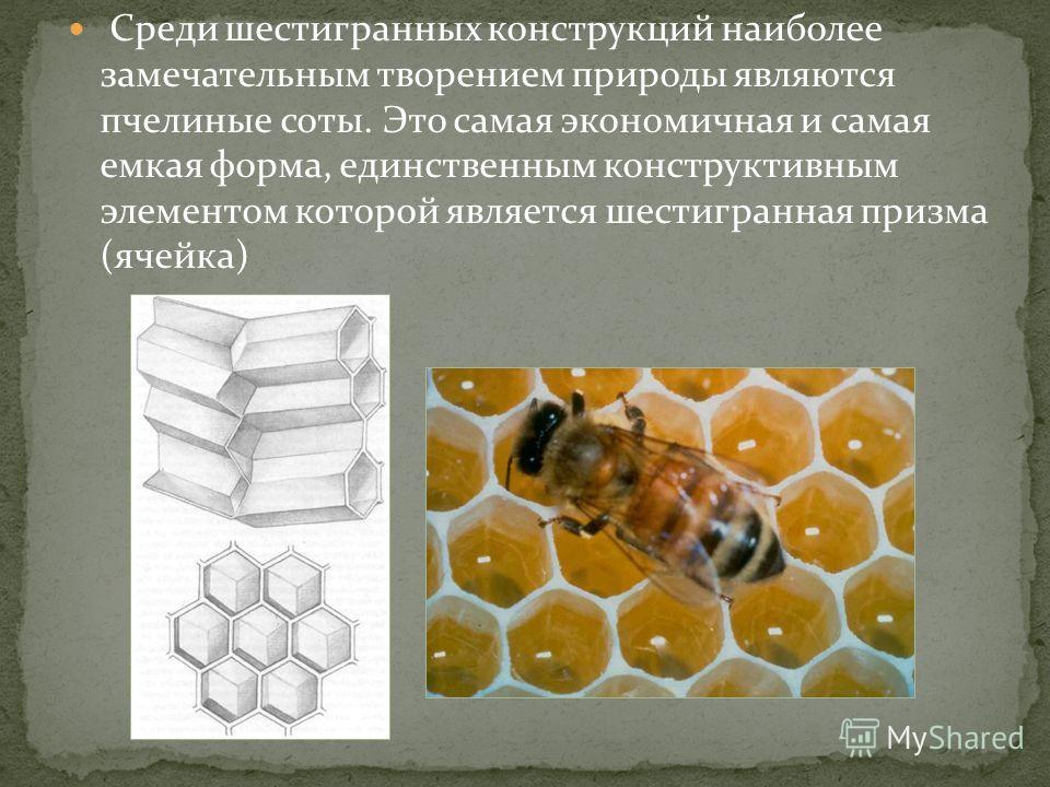 Среди шестигранных конструкций наиболее замечательным творением природы являются пчелиные соты. Это самая экономичная и самая емкая форма, единственным конструктивным элементом которой является шестигранная призма (ячейка)