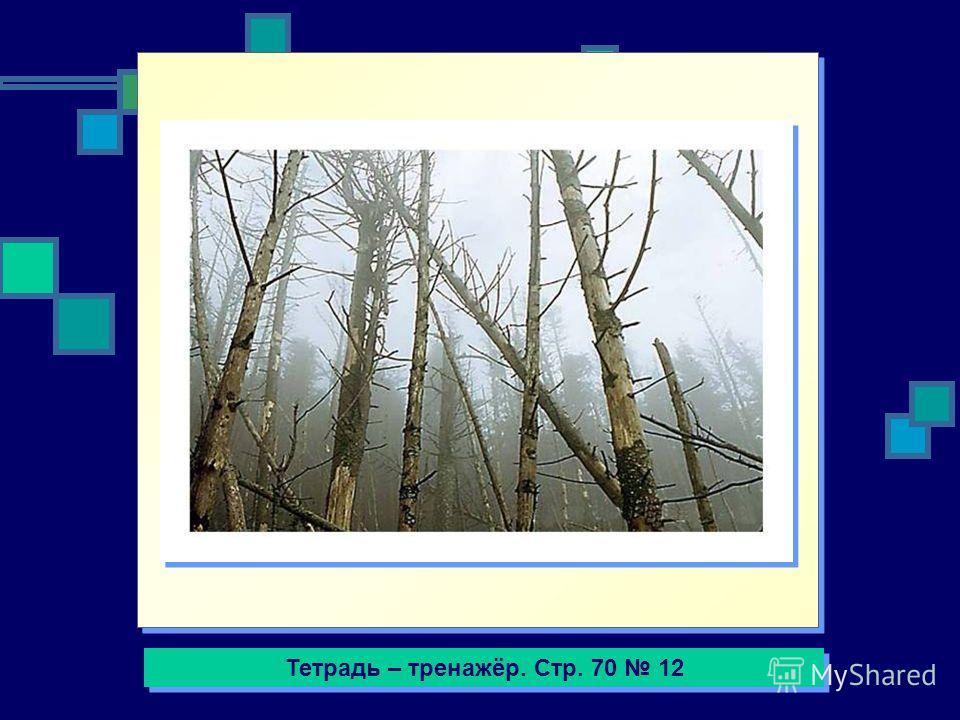 Тетрадь – тренажёр. Стр. 70 12