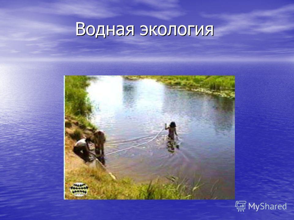 Водная экология