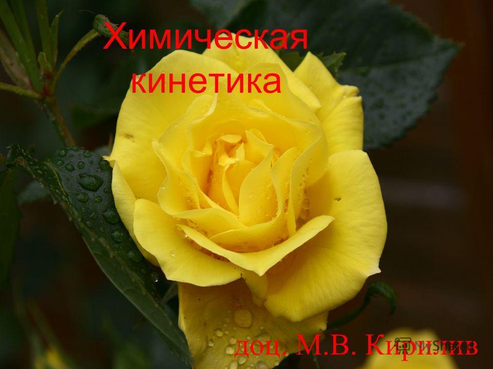 Химическая кинетика доц. М.В. Кирилив
