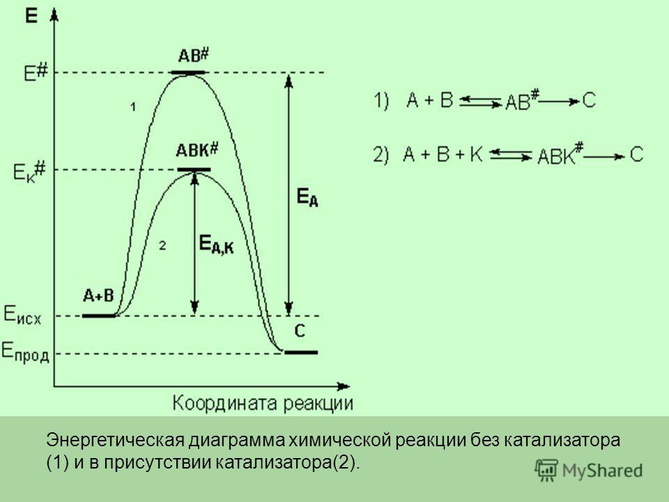 Энергетическая диаграмма химической реакции без катализатора (1) и в присутствии катализатора(2).