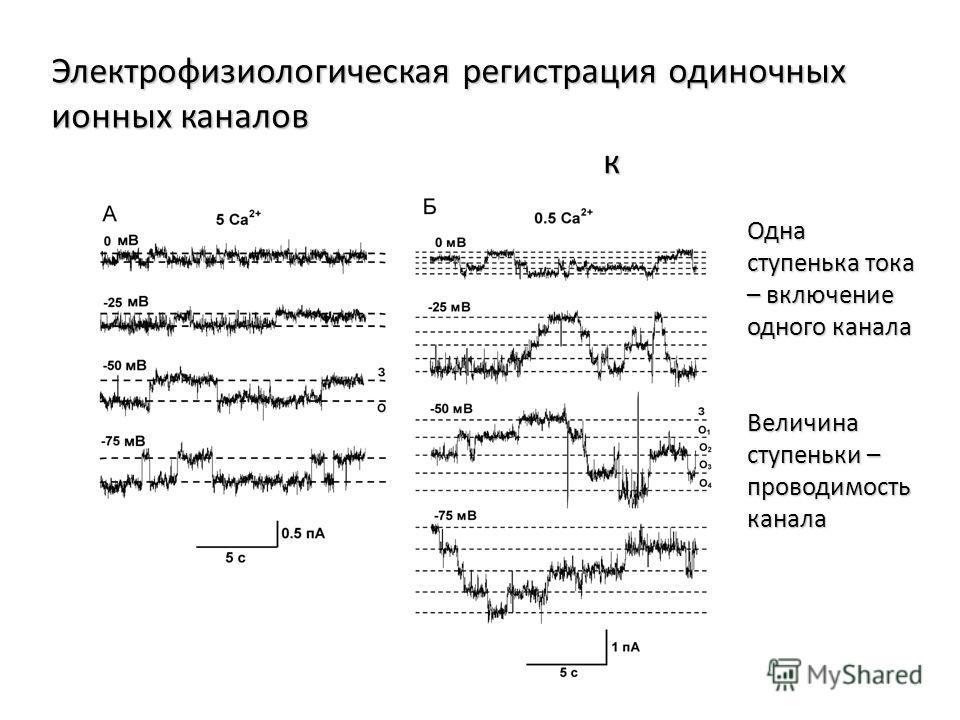 Электрофизиологическая регистрация одиночных ионных каналов к Одна ступенька тока – включение одного канала Величина ступеньки – проводимость канала