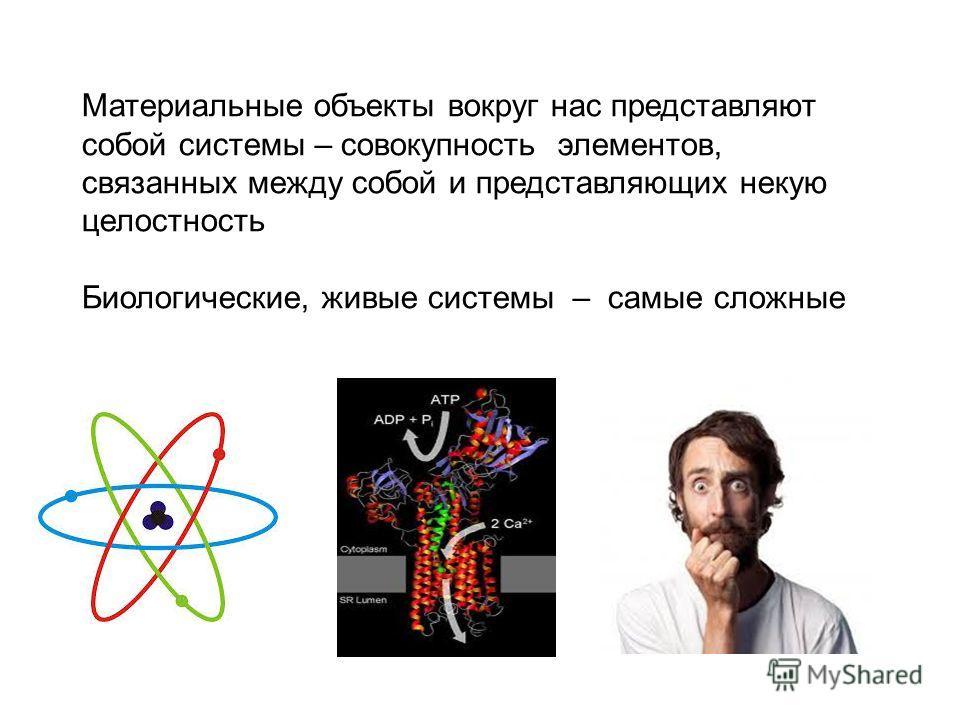 Материальные объекты вокруг нас представляют собой системы – совокупность элементов, связанных между собой и представляющих некую целостность Биологические, живые системы – самые сложные