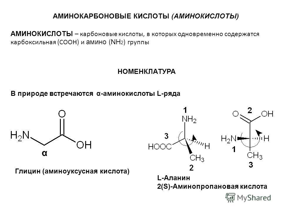 АМИНОКАРБОНОВЫЕ КИСЛОТЫ (АМИНОКИСЛОТЫ) АМИНОКИСЛОТЫ – карбоновые кислоты, в которых одновременно содержатся карбоксильная (СООН) и амино ( NH 2 ) группы В природе встречаются α-аминокислоты L-ряда α Глицин (аминоуксусная кислота) L-Аланин 2(S)-Аминоп