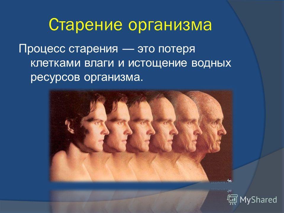 Старение организма Процесс старения это потеря клетками влаги и истощение водных ресурсов организма.