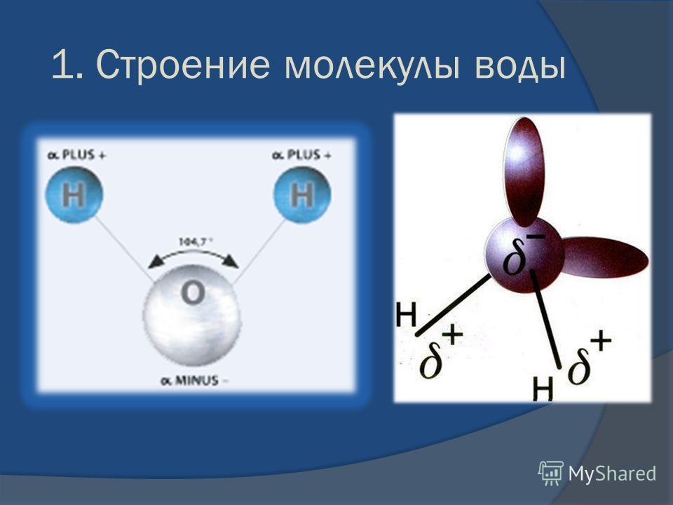 1. Строение молекулы воды