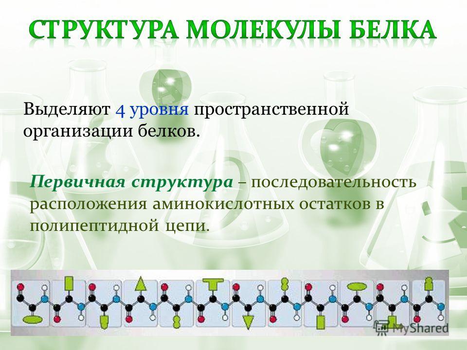 Первичная структура – последовательность расположения аминокислотных остатков в полипептидной цепи. Выделяют 4 уровня пространственной организации белков.