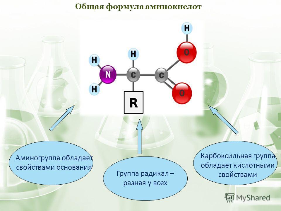 Аминогруппа обладает свойствами основания Группа радикал – разная у всех Карбоксильная группа обладает кислотными свойствами Общая формула аминокислот