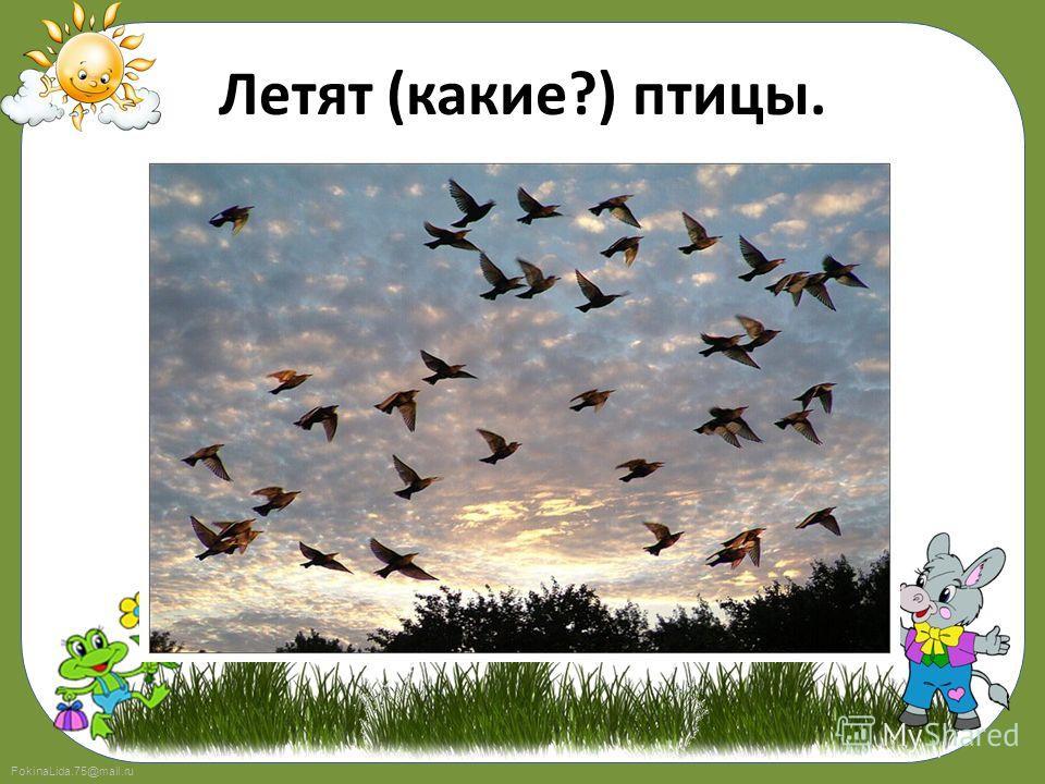 FokinaLida.75@mail.ru Летят (какие?) птицы.