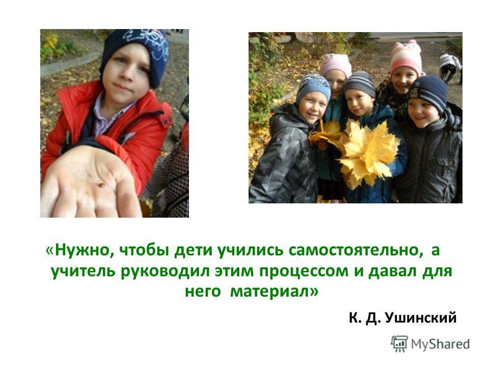 «Нужно, чтобы дети учились самостоятельно, а учитель руководил этим процессом и давал для него материал» К. Д. Ушинский
