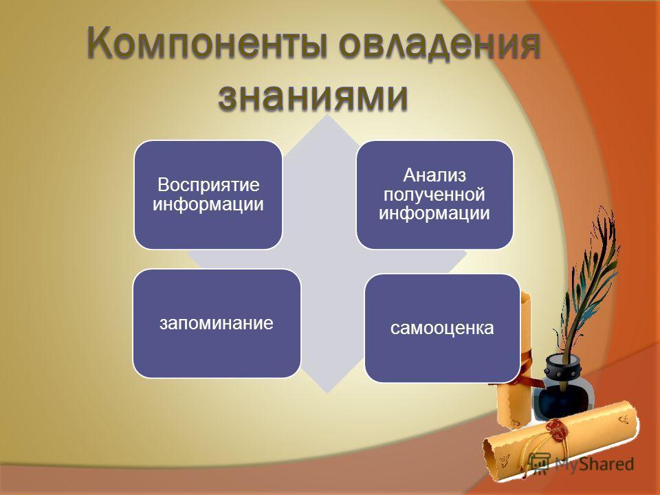 Восприятие информации Анализ полученной информации запоминание самооценка