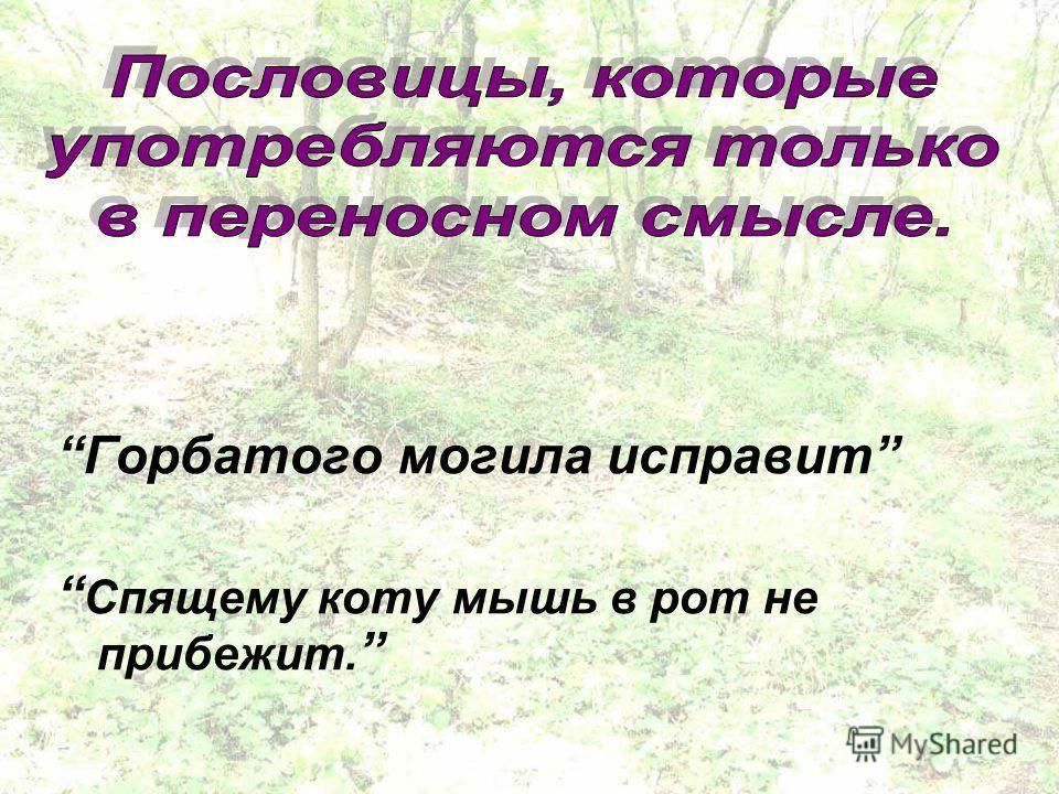 Горбатого могила исправит Спящему коту мышь в рот не прибежит.