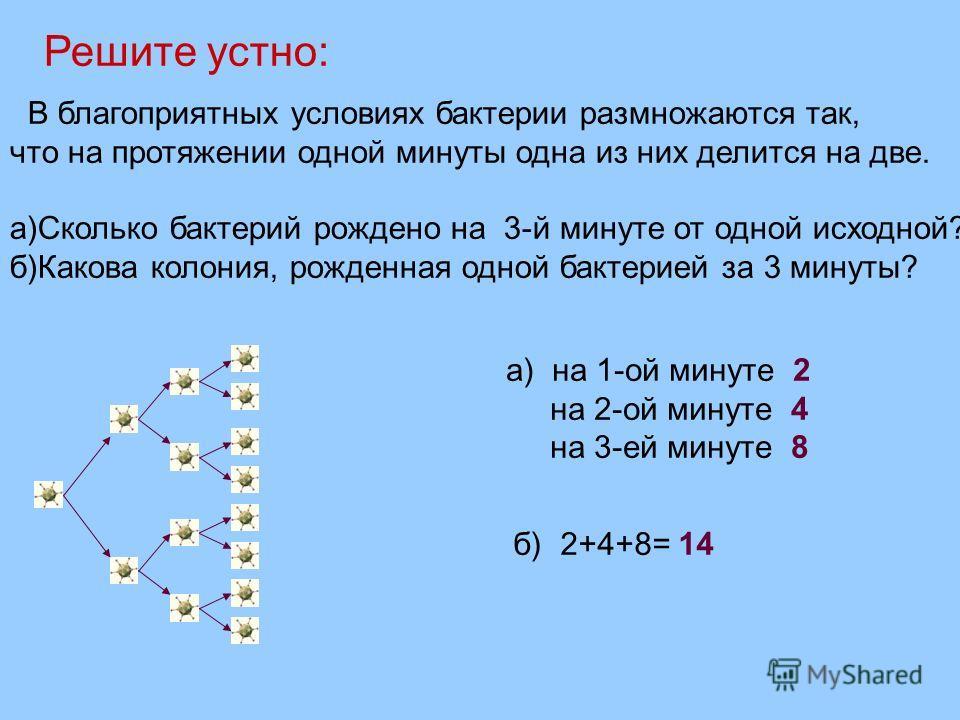 В благоприятных условиях бактерии размножаются так, что на протяжении одной минуты одна из них делится на две. а)Сколько бактерий рождено на 3-й минуте от одной исходной? б)Какова колония, рожденная одной бактерией за 3 минуты? а) на 1-ой минуте 2 на