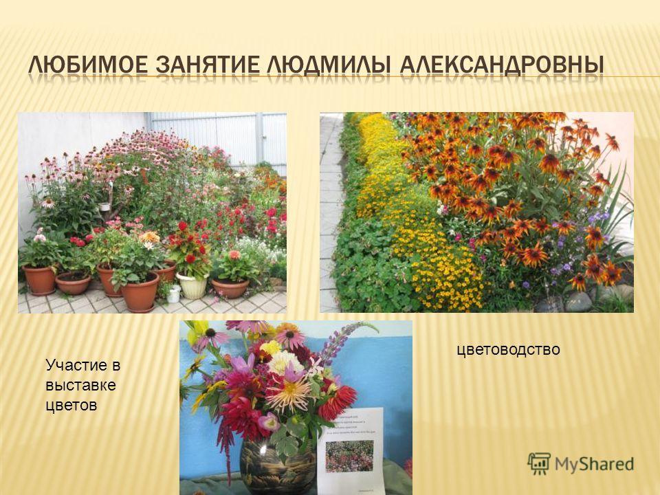 цветоводство Участие в выставке цветов