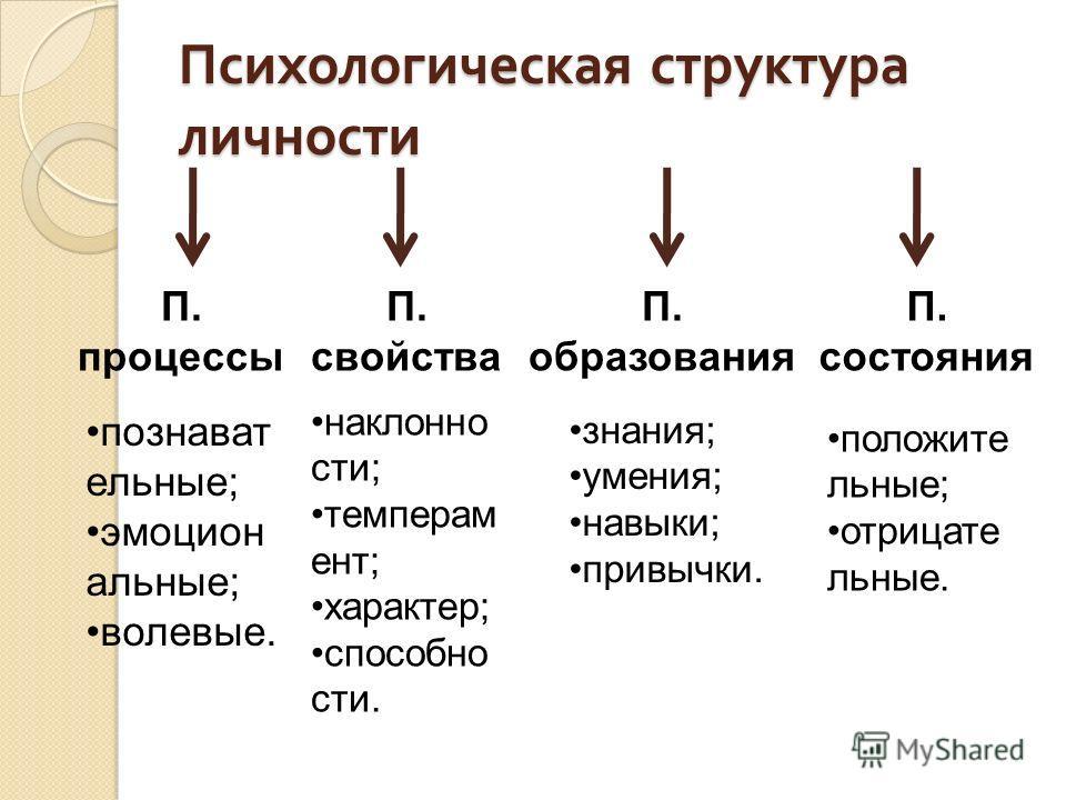 Психологическая структура личности П. процессы П. свойства П. образования П. состояния познавательные; эмоциональные; волевые. наклонности; темперамент; характер; способности. знания; умения; навыки; привычки. положительные; отрицательные.