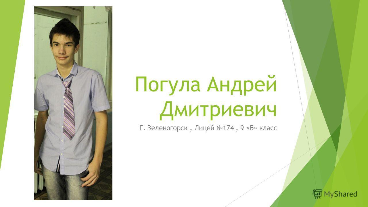 Погула Андрей Дмитриевич Г. Зеленогорск, Лицей 174, 9 «Б» класс