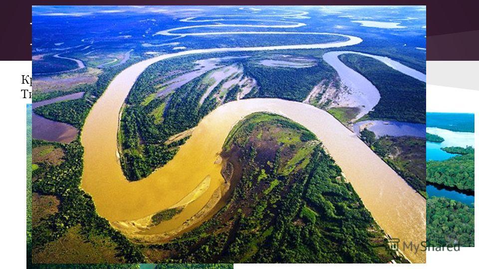 Реки и озера Крупнейшие реки Амазонка и Мараньон. Самое большое озеро Титикака.Амазонка