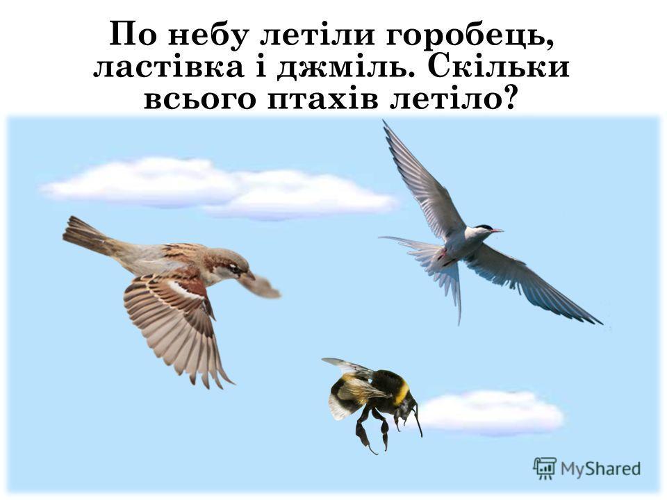 По небу летіли горобець, ластівка і джміль. Скільки всього птахів летіло?