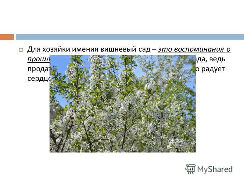 Для хозяйки имения вишневый сад – это воспоминания о прошлом. Она гонит от себя мысль о продаже сада, ведь продать сад, значит продать себя, продать то, что радует сердце, согревает душу.