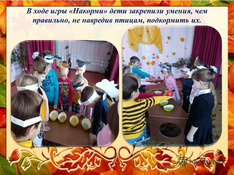 В ходе игры «Накорми» дети закрепили умения, чем правильно, не навредив птицам, подкормить их.