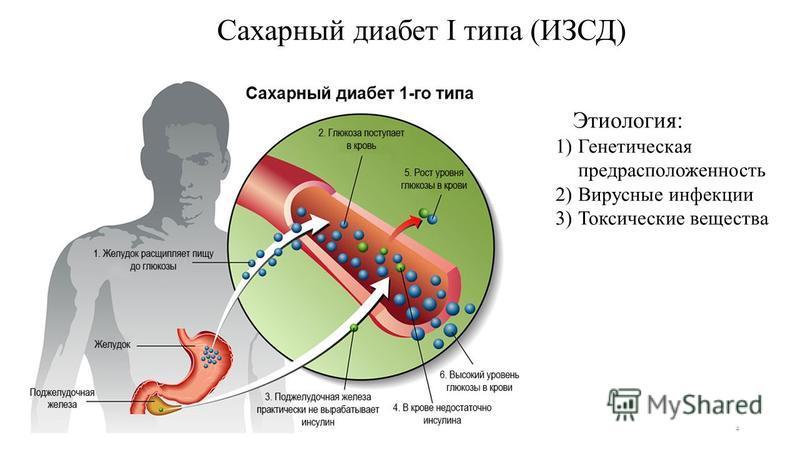 Пансионат для людей с деменцией в москве