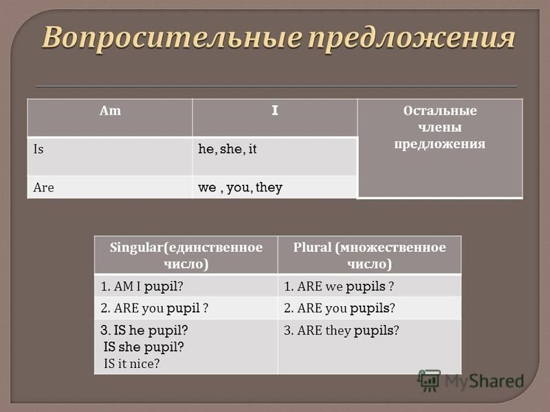 AmI Остальные члены предложения Ishe, she, it Arewe, you, they Singular( единственное число ) Plural ( множественное число ) 1. AM I pupil?1. ARE we pupils ? 2. ARE you pupil ?2. ARE you pupils? 3. IS he pupil? IS she pupil? IS it nice? 3. ARE they p