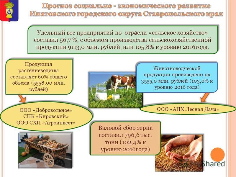 Удельный вес предприятий по отрасли «сельское хозяйство» составил 56,7 %, с объемом производства сельскохозяйственной продукции 9113,0 млн. рублей, или 105,8% к уровню 2016 года. Продукция растениеводства составляет 60% общего объема (5558,00 млн. ру