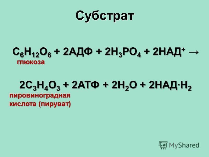 Субстрат С 6 Н 12 О 6 + 2АДФ + 2Н 3 РО 4 + 2НАД + С 6 Н 12 О 6 + 2АДФ + 2Н 3 РО 4 + 2НАД + глюкоза глюкоза 2С 3 Н 4 О 3 + 2АТФ + 2Н 2 О + 2НАД·Н 2 пировиноградная кислота (пируват)