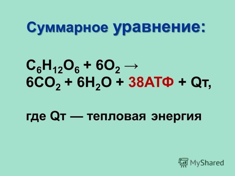 Суммарное уравнение: С 6 Н 12 О 6 + 6О 2 6СО 2 + 6Н 2 О + 38АТФ + Qт, где Qт тепловая энергия