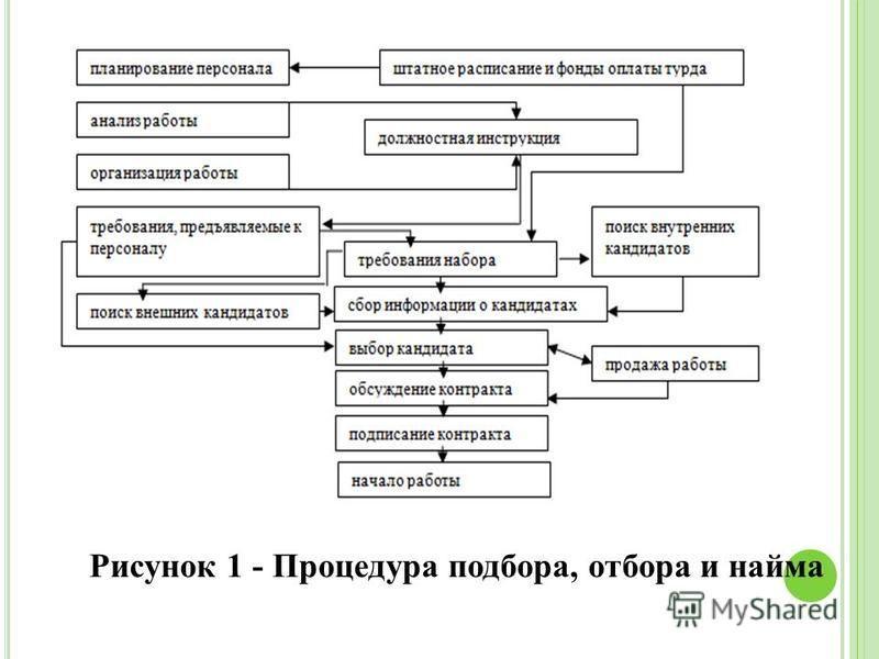 Рисунок 1 - Процедура подбора, отбора и найма