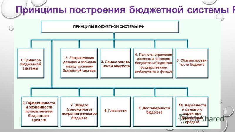 Принципы построения бюджетной системы РФ