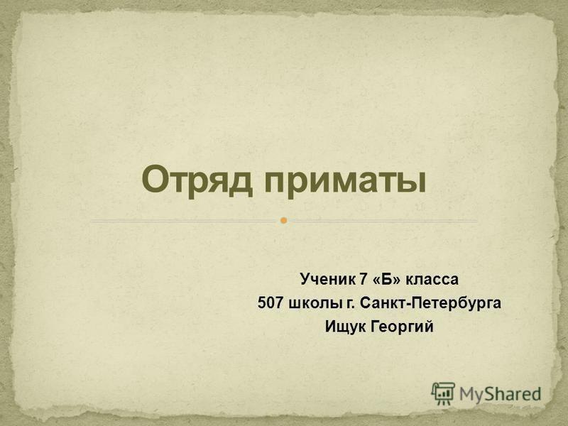 Ученик 7 «Б» класса 507 школы г. Санкт-Петербурга Ищук Георгий