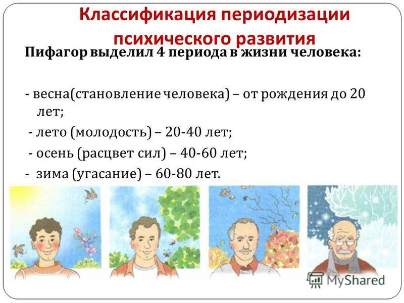 Классификация периодизации психического развития Пифагор выделил 4 периода в жизни человека : - весна ( становление человека ) – от рождения до 20 лет ; - лето ( молодость ) – 20-40 лет ; - осень ( расцвет сил ) – 40-60 лет ; - зима ( угасание ) – 60