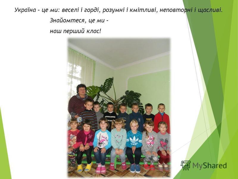 Україна – це ми: веселі і горді, розумні і кмітливі, неповторні і щасливі. Знайомтеся, це ми – наш перший клас!
