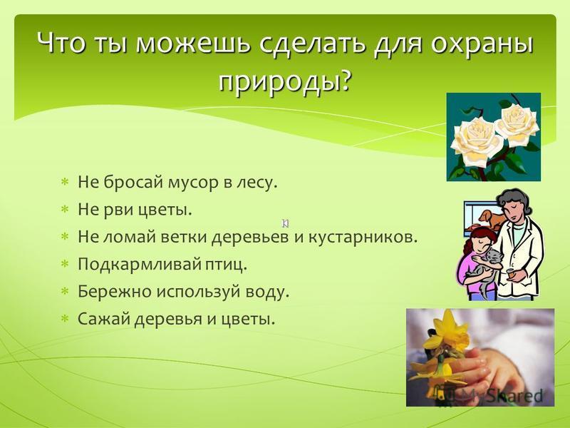 Не бросай мусор в лесу. Не рви цветы. Не ломай ветки деревьев и кустарников. Подкармливай птиц. Бережно используй воду. Сажай деревья и цветы. Что ты можешь сделать для охраны природы?