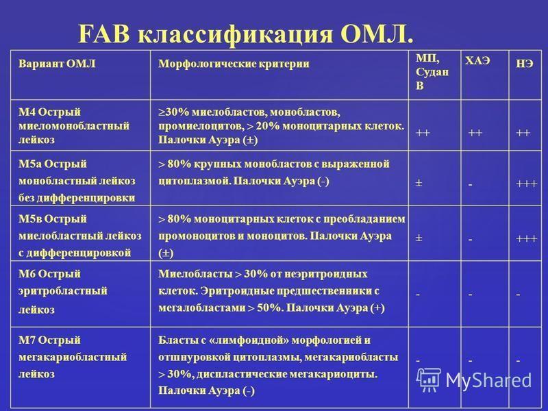 Вариант ОМЛМорфологические критерии МП, Судан В ХАЭ НЭ М4 Острый миеломонобластный лейкоз 30% миелобластов, монобластов, промиелоцитов, 20% моноцитарных клеток. Палочки Ауэра ( ) ++ М5 а Острый монобластный лейкоз без дифференцировки 80% крупных моно