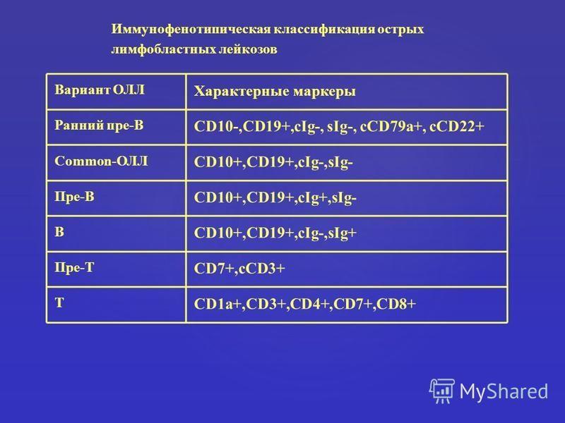 Вариант ОЛЛ Характерные маркеры Ранний пре-В CD10-,CD19+,cIg-, sIg-, cCD79a+, cCD22+ Common-ОЛЛ CD10+,CD19+,cIg-,sIg- Пре-В CD10+,CD19+,cIg+,sIg- В CD10+,CD19+,cIg-,sIg+ Пре-Т CD7+,cCD3+ Т CD1a+,CD3+,CD4+,CD7+,CD8+ Иммунофенотипическая классификация
