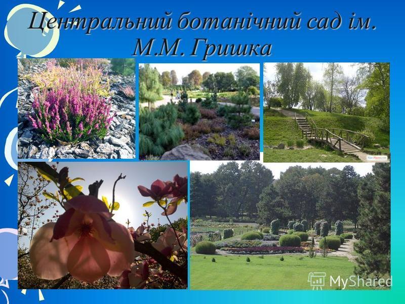 Центральний ботанічний сад ім. М. М. Гришка