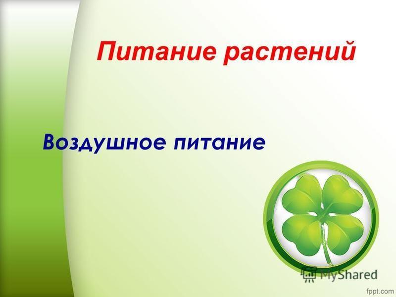 Питание растений Воздушное питание
