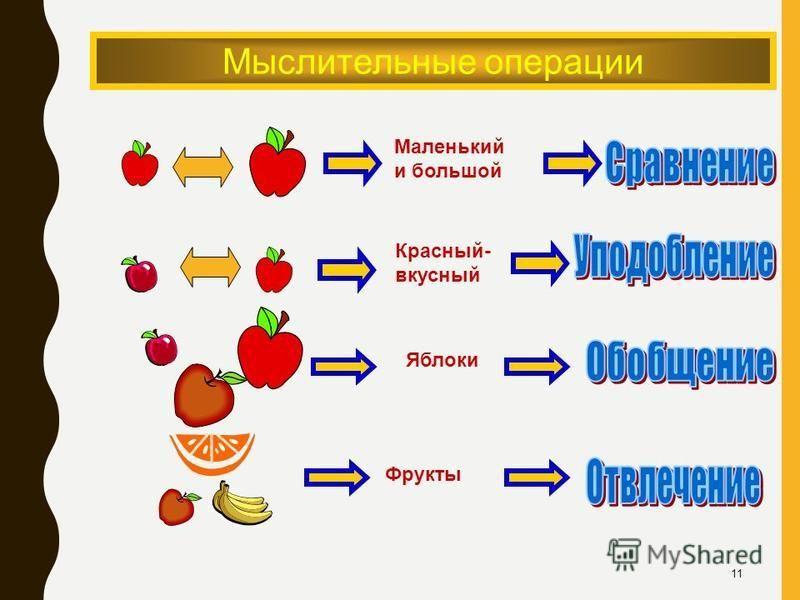Мыслительные операции Маленький и большой Красный- вкусный Фрукты Яблоки 11