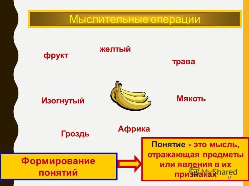 Мыслительные операции фрукт желтый трава Изогнутый Гроздь Африка Мякоть Формирование понятий Понятие - это мысль, отражающая предметы или явления в их признаках 12