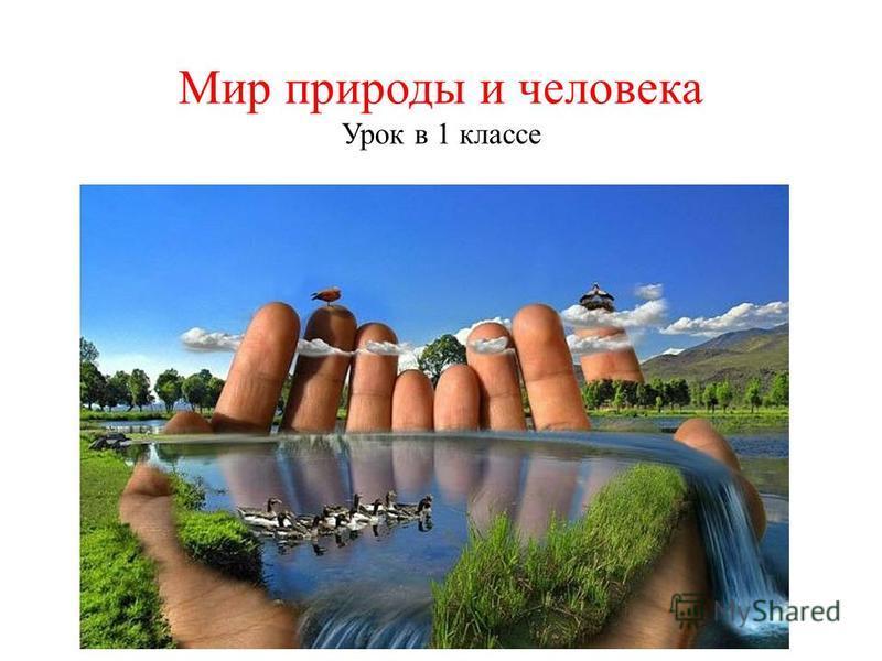 Мир природы и человека Урок в 1 классе