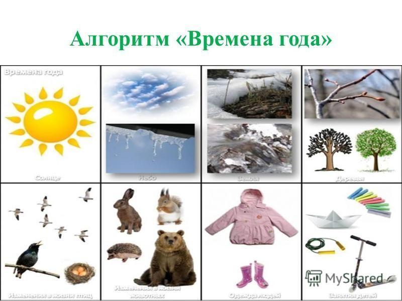 Алгоритм «Времена года»