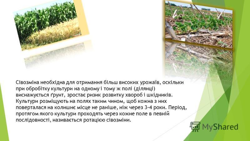 Сівозміна необхідна для отримання більш високих урожаїв, оскільки при обробітку культури на одному і тому ж полі (ділянці) виснажується ґрунт, зростає ризик розвитку хвороб і шкідників. Культури розміщують на полях таким чином, щоб кожна з них поверт