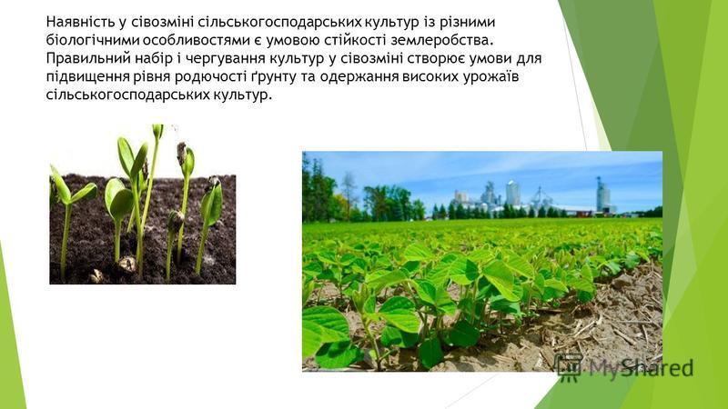 Наявність у сівозміні сільськогосподарських культур із різними біологічними особливостями є умовою стійкості землеробства. Правильний набір і чергування культур у сівозміні створює умови для підвищення рівня родючості ґрунту та одержання високих урож