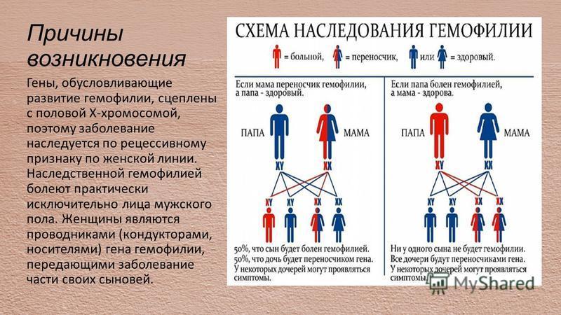 Причины возникновения Гены, обусловливающие развитие гемофилии, сцеплены с половой Х-хромосомой, поэтому заболевание наследуется по рецессивному признаку по женской линии. Наследственной гемофилией болеют практически исключительно лица мужского пола.